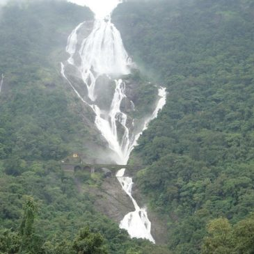 "Dudhsagar Waterfall""🌧Trek 28-29 July 2018"